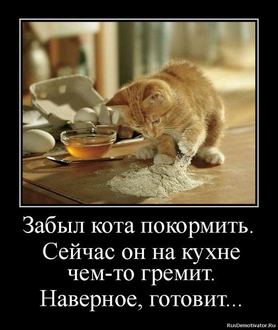 http://sg.uploads.ru/t/GuZpJ.jpg