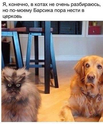 http://sg.uploads.ru/t/NCV5F.jpg