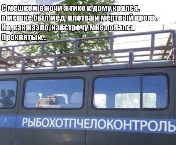 http://sg.uploads.ru/t/OAEam.jpg