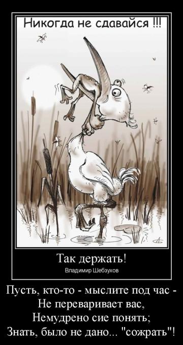 http://sg.uploads.ru/t/Ug8BN.png