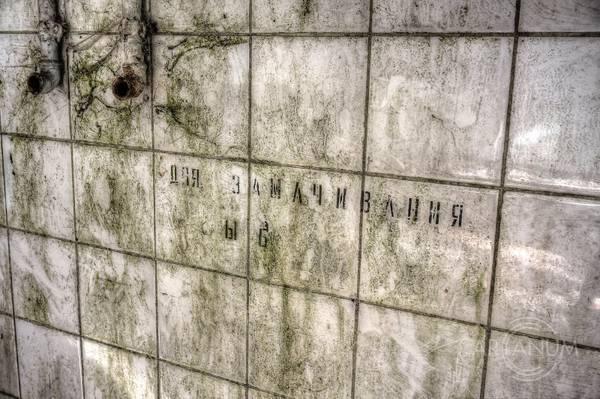 http://sg.uploads.ru/t/WInep.jpg