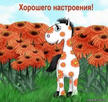 http://sg.uploads.ru/t/fpSsO.jpg
