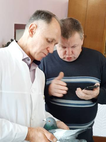 http://sg.uploads.ru/t/gx7tW.jpg