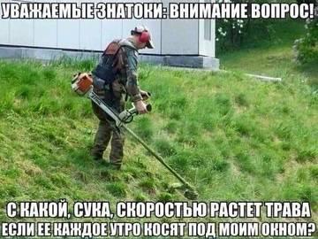 http://sg.uploads.ru/t/iCx61.jpg