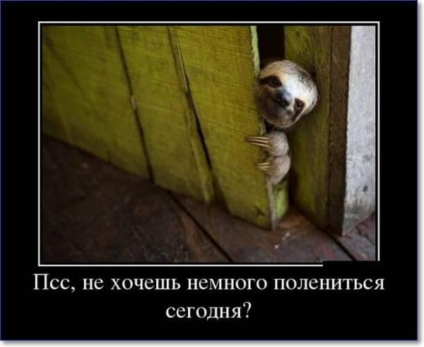 http://sg.uploads.ru/t/ljJ2U.jpg