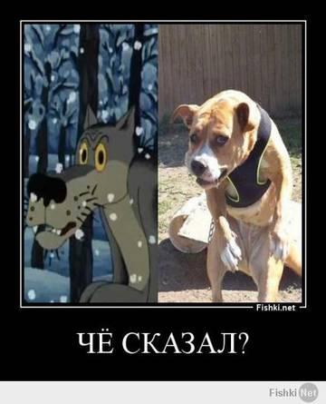 http://sg.uploads.ru/t/nMycX.jpg