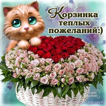 http://sg.uploads.ru/t/sciEW.jpg