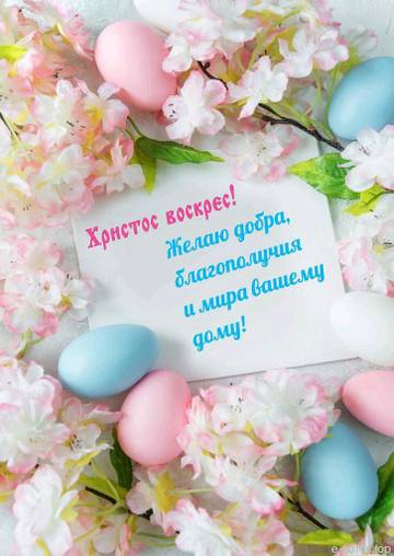 http://sg.uploads.ru/t/yKBqj.jpg