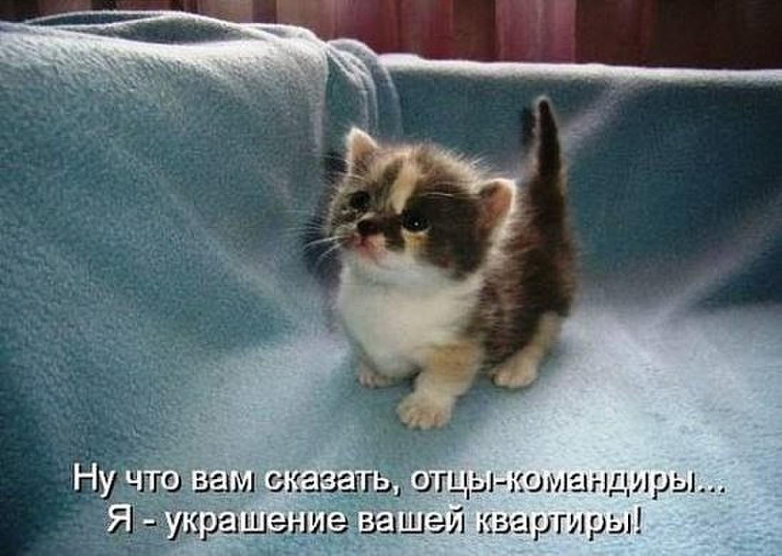 http://sg.uploads.ru/ufyIz.jpg